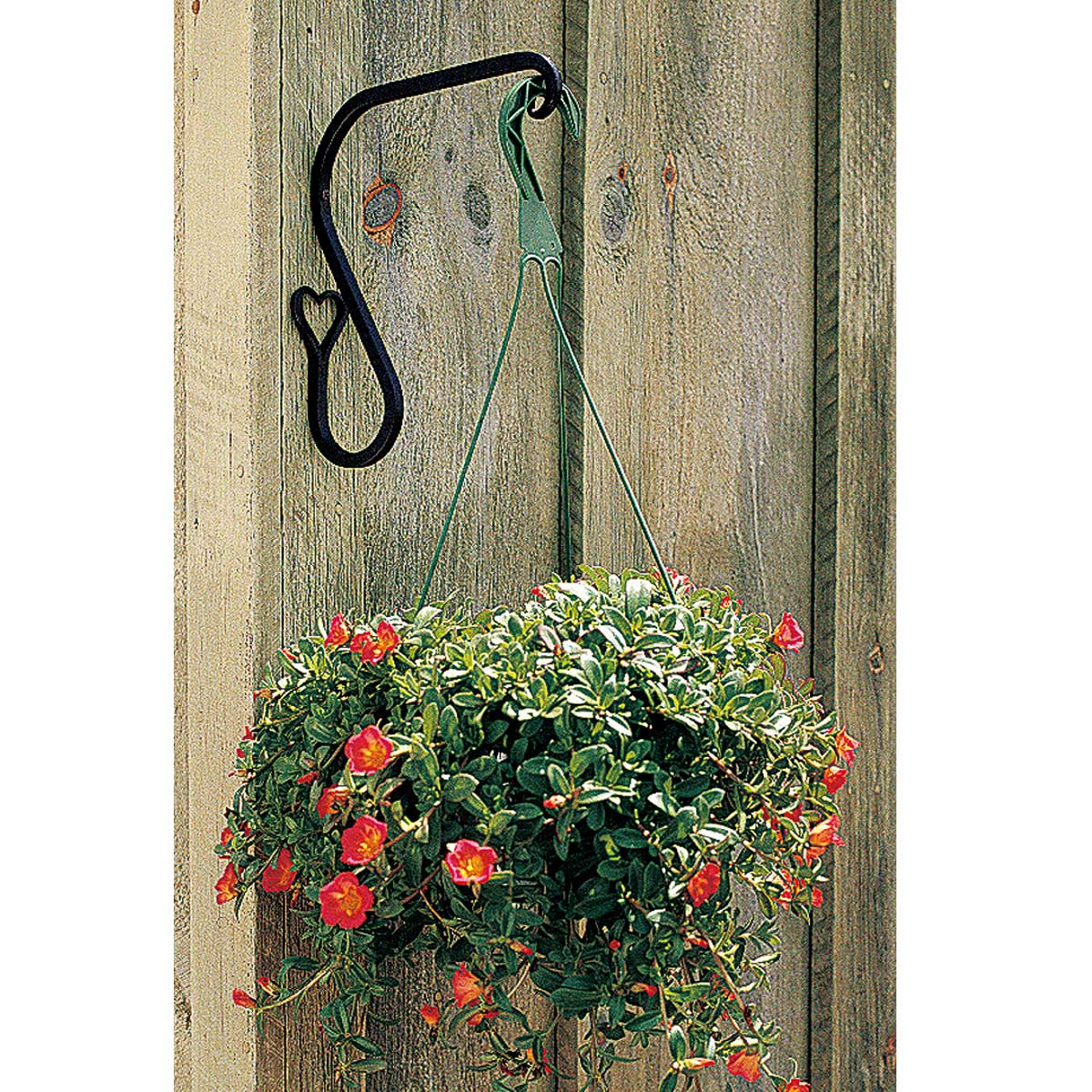 Wrought Iron Plant Hanger Heart